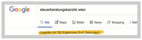 Google Suche Steuerberatungskanzlei Wien