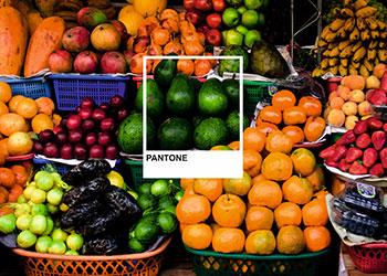 verschiedene Obstsorten im Hintergrund mit Pantone Cover