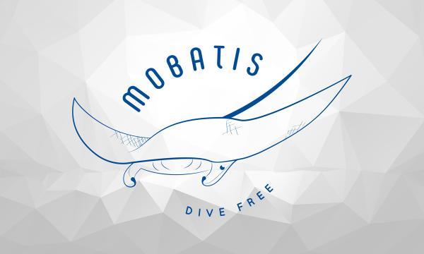 mobatis