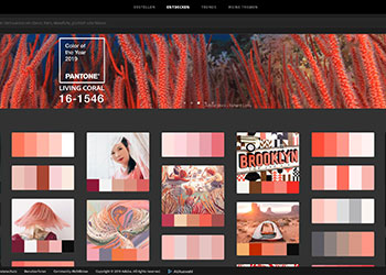 Felder mit Farbkompositionen in verschiedenen Rottönen