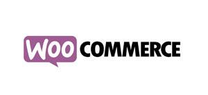 WooCommerce Programmierung